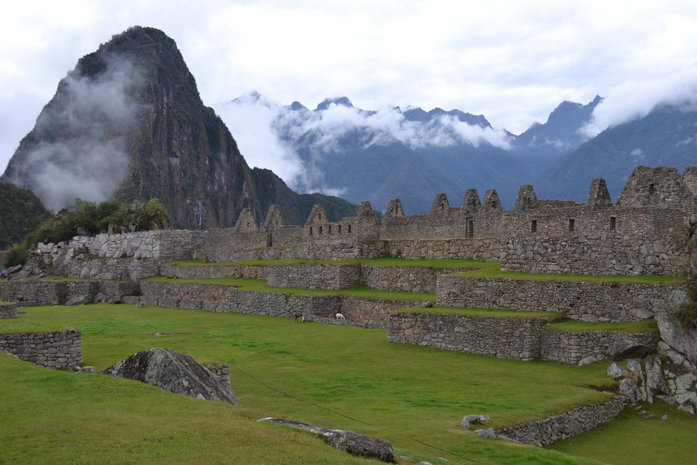 Barely any Tourists visible at Machu Picchu