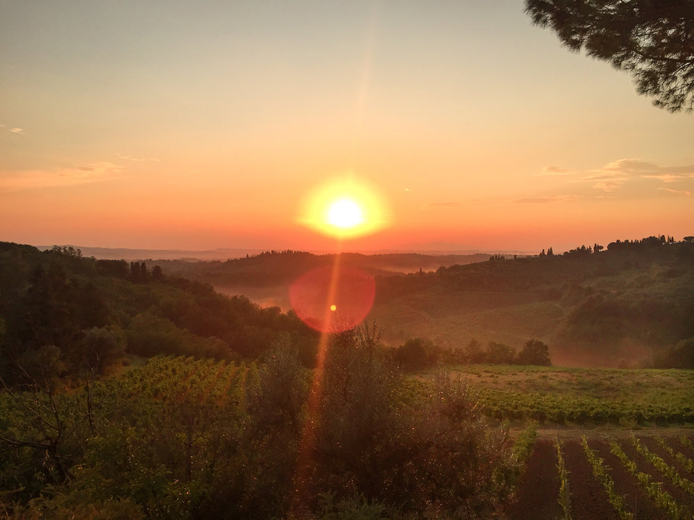 View over the Tuscan wine plantations at sunset - calming my social anxiety at events