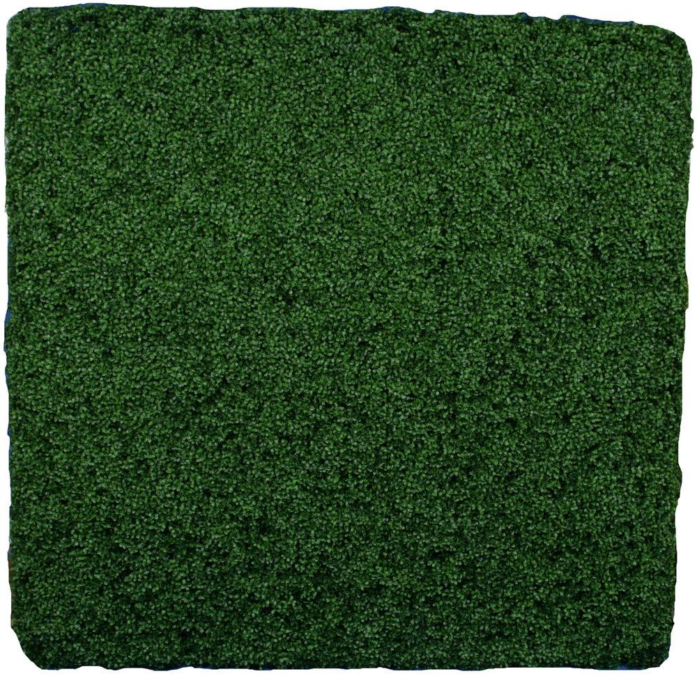 Square Boxwood Hedge