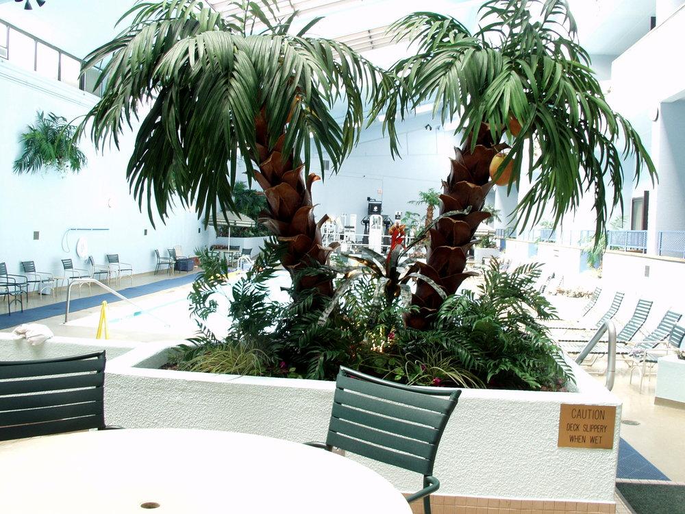 Hotel pool Uniondale LI