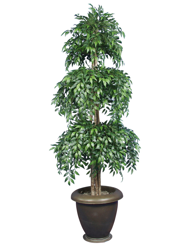 TPT 1109- Smilax Topiary
