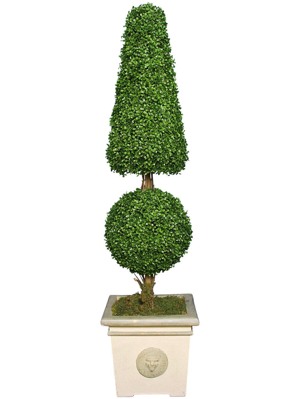 TSP 1167- Boxwood Cone & Ball Topiary