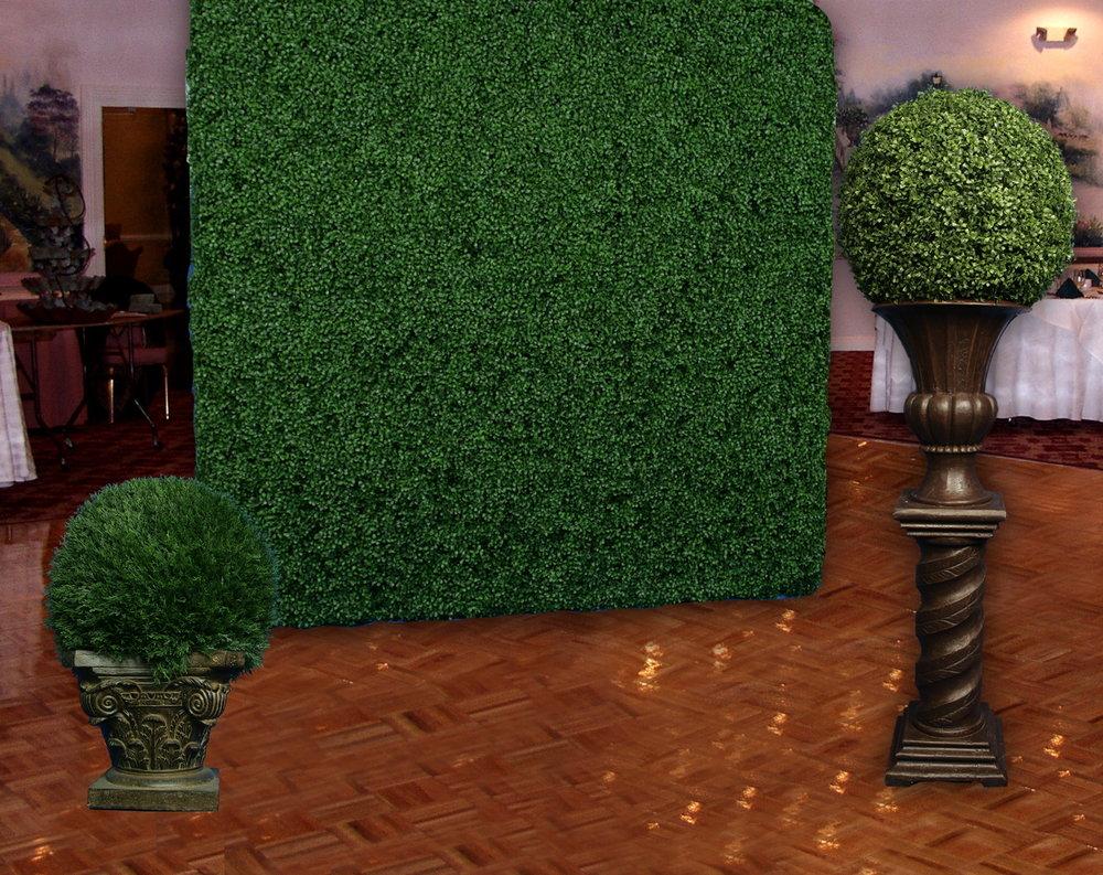 Ball & Hedge