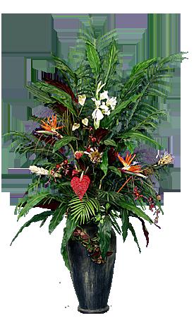 PL099 Palm Garden