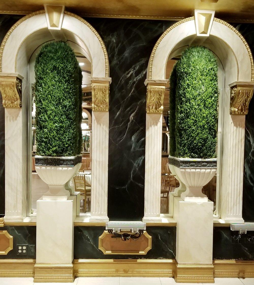 Conical Cedar topiary