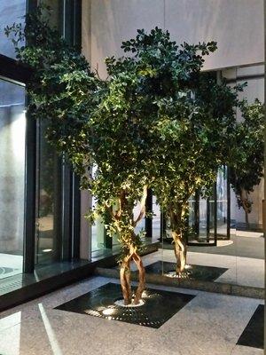 Colonnade+Bldj+lobby+NYC.jpg
