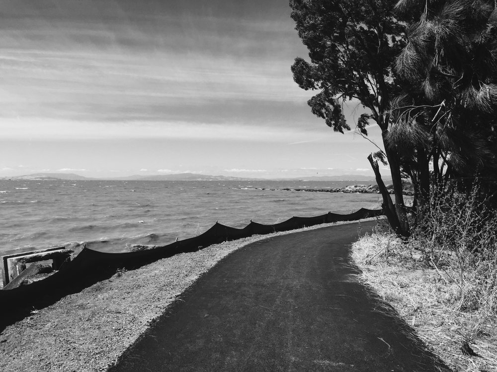 Walk with along the shore with me... Pinole is a hidden little suburb in the East Bay Area. But it has such a quiet beauty to it. The shoreline in Pinole harbors a wonderfully serene atmosphere. Let's go explore it!