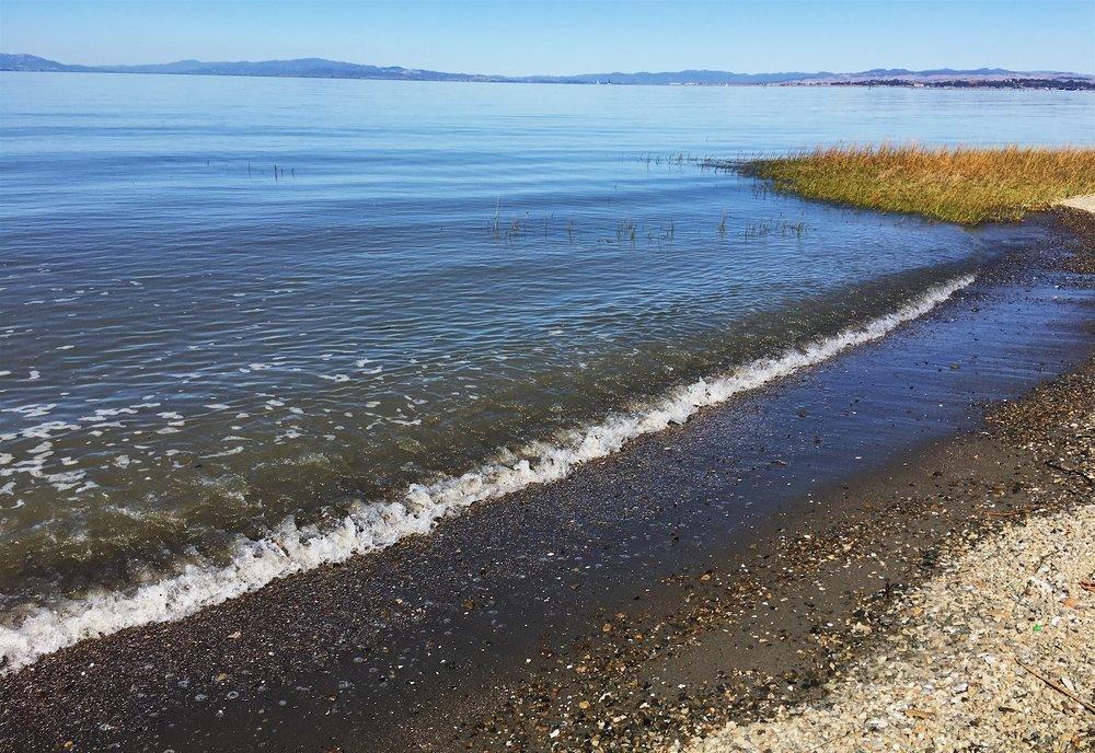 shore water.JPG