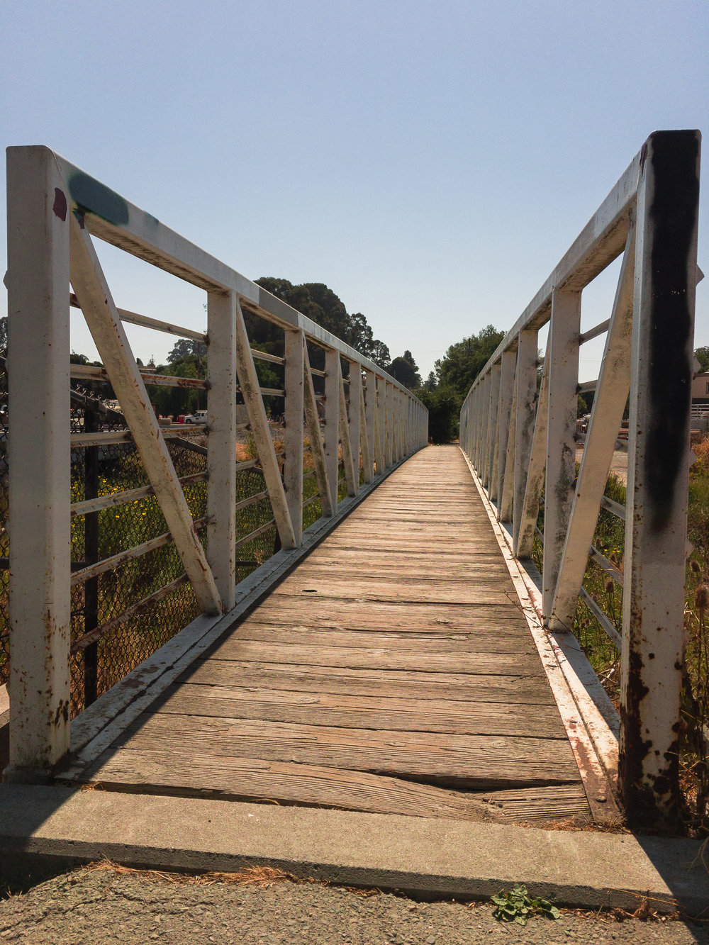 There is a bridge that connects the trail to the Pinole shoreline's water edge. The bridge always gives me the creeps and creaks so much that you can't help but worry if it will break.