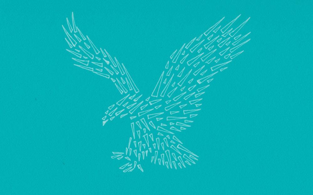 AMERICAN EAGLE - 2015