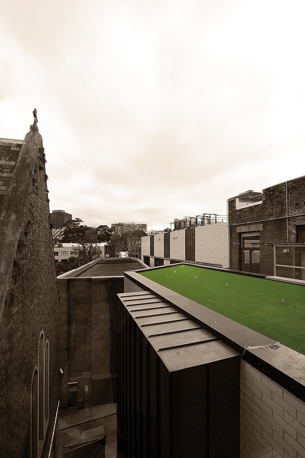 Website | File | Terence Yong Architecture | Little Albion Luxury Boutique Hotel and Guest House, Surry Hills | All about the rear extensions | Green roof.jpg
