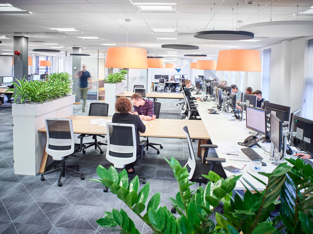 Collaborative workspaces at rg+p Architects offices.