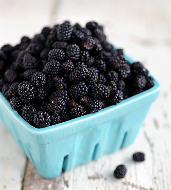 Blackberries-7575