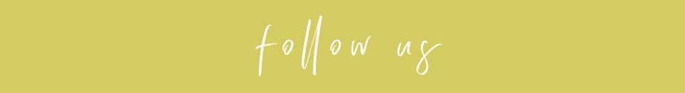 follow us - chartreuse.jpg