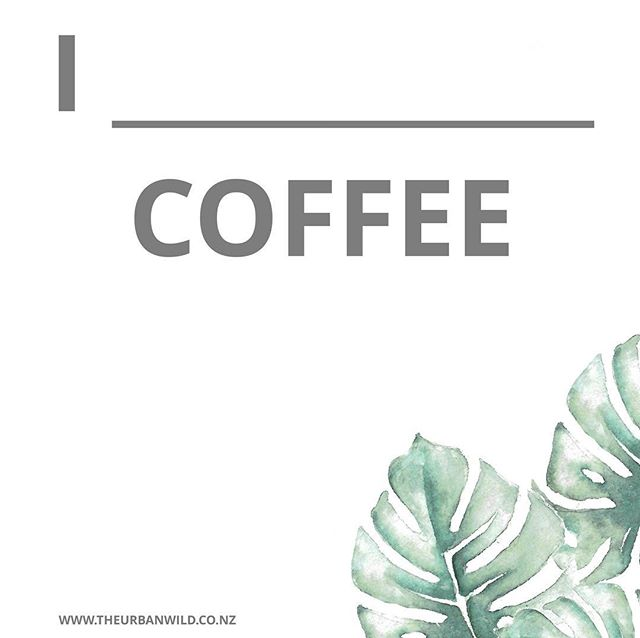 I am fuelled by coffee.⠀ ⠀ Having made many espressos in my lifetime though, I'm very particular about my coffee. So if I think I'm going to be disappointed, I order a mocha or ice mocha. Otherwise it's a flat white or iced coffee for me. ⠀ ⠀ Why am I telling you this? Because it's precisely what I'm heading off in search of right now, along with water because our tank is empty AGAIN and my favourite cafe is closed for the day *sadface* ⠀ What's your order? Do you even drink coffee? ⠀