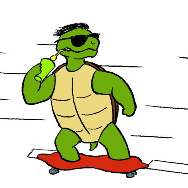 Skateboarding turtle - 2D animation