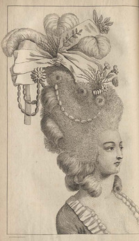 An elaborate hairstyle taken from Plocacosmos
