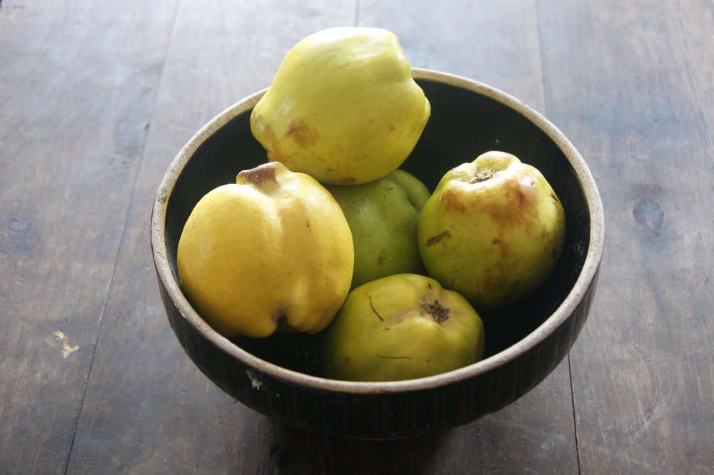 There are over twenty varieties of quince, each with their own scent, flavour shape, but all roughly yellow or green and rather tart if consumed uncooked. Each will provide a rather different marmalade.