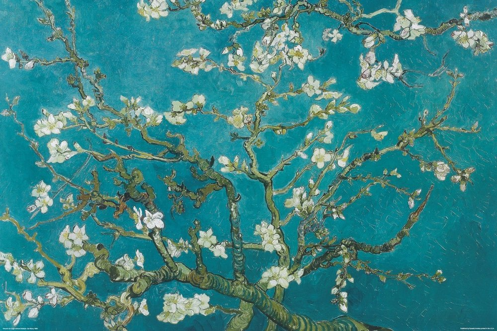 VanGogh Almond Blossoms.jpg
