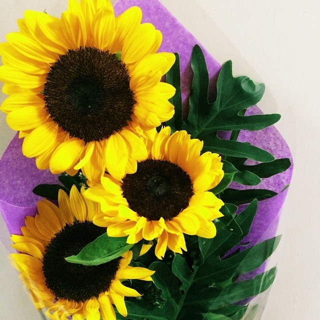 """""""I want to be the first and only one who gives you sunflowers."""" -Vergs     Always the luckiest with you, babe.❤️"""