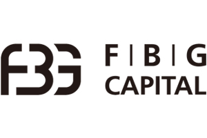 Strategic Partners Icons FBG.jpg