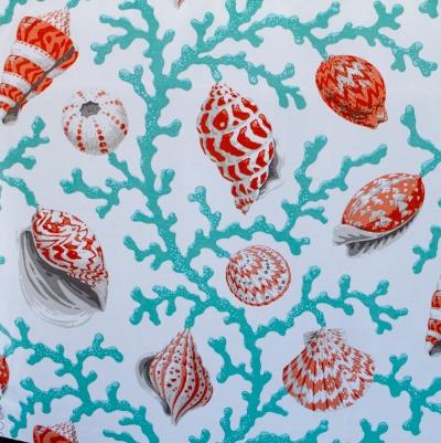 Tangerine Shells D.jpg