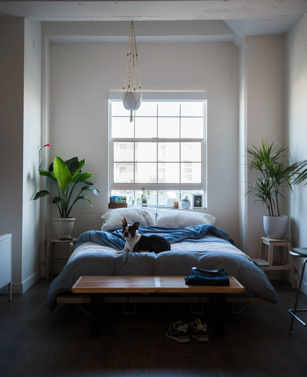 7. Choose low profile furniture - Low profile furniture helps ceilings to look higher and small rooms brighter. As windows are unobstructed the view is showcased and light floods in. An abundance of natural light rejuvenates the spirit after a hard days work. Your tiny home is now a delicious retreat.