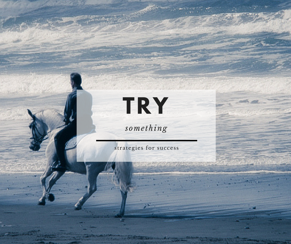 7. - Try something that you observed in one horse with other horses and students