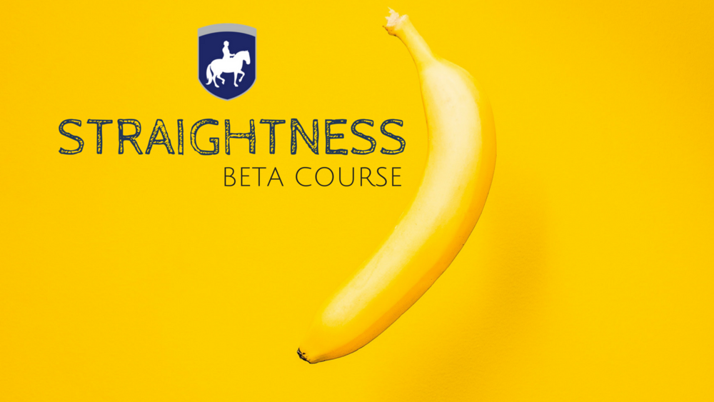 STRAIGHTNESS BETA COURSE