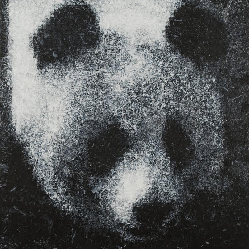 Panda, 2008