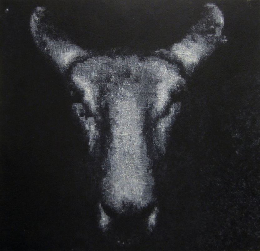 Sheep, 2008