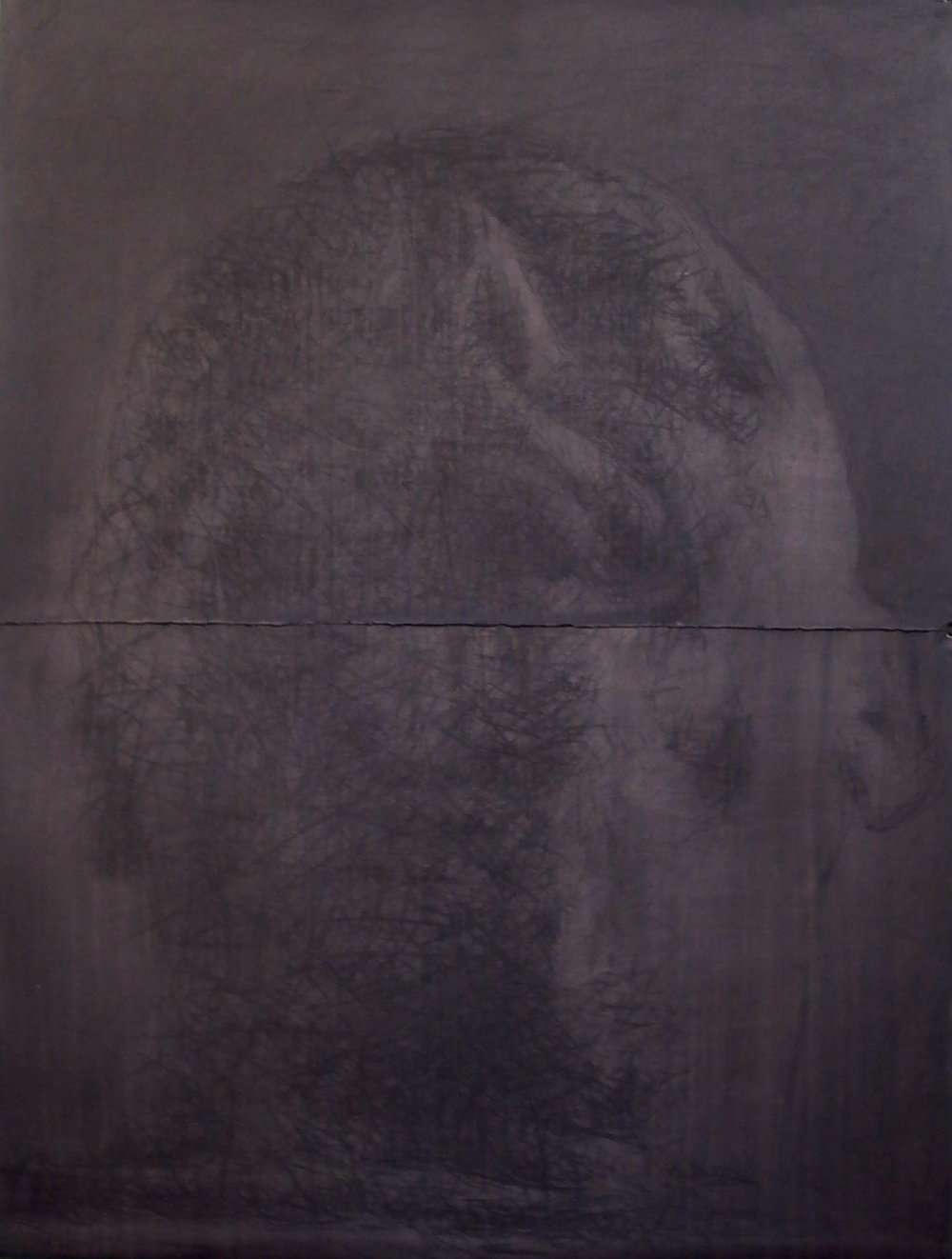 J Beard- 6th Austalian Drawing Biennale (7.jpg