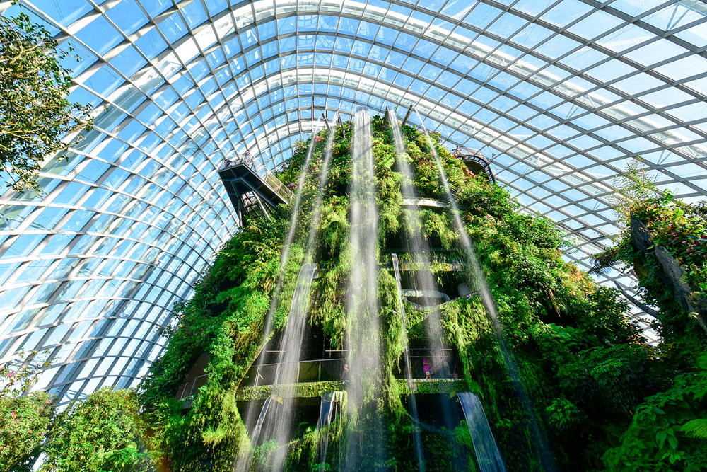 Cloud Forest Dome - Garden by the Bay