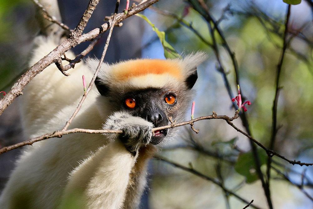 EXPOSE_TRAVEL_MADAGASCAR_25.jpg