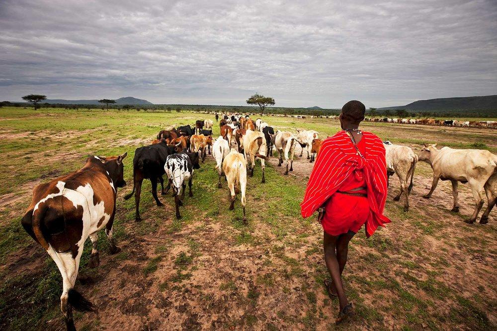 EXPOSE_TRAVEL_I-LOVE-AFRICA_05.jpg