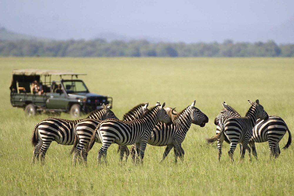 EXPOSE_TRAVEL_I-LOVE-AFRICA_19.jpg
