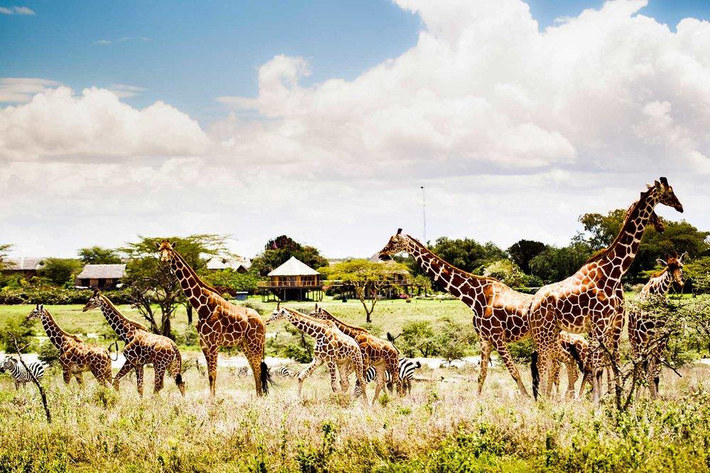 EXPOSE_TRAVEL_I-LOVE-AFRICA_23.jpg