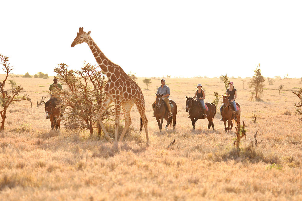LB-BLOG_AMAZING-AFRICA-–-A-DESTINATION-FOR-ALL-AGES_24.jpg