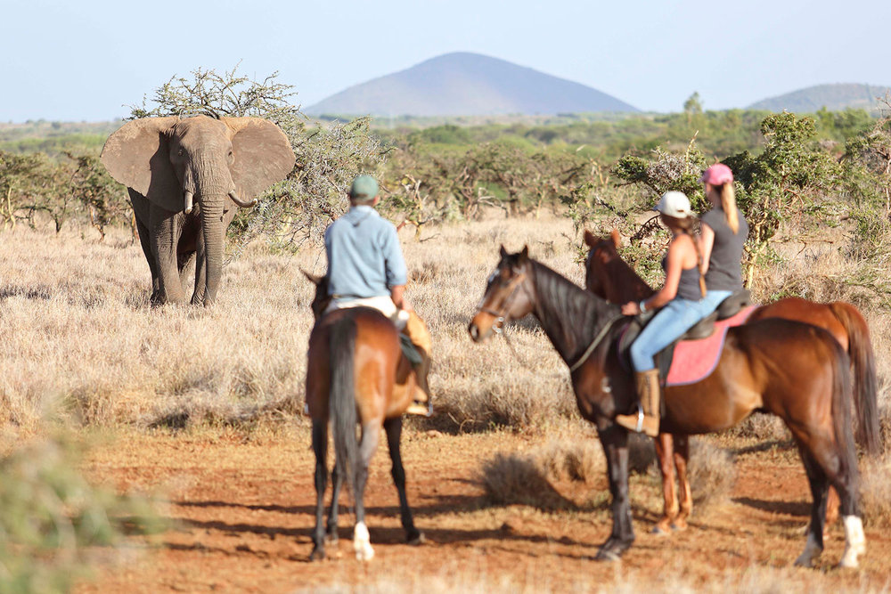 LB-BLOG_AMAZING-AFRICA-–-A-DESTINATION-FOR-ALL-AGES_25.jpg