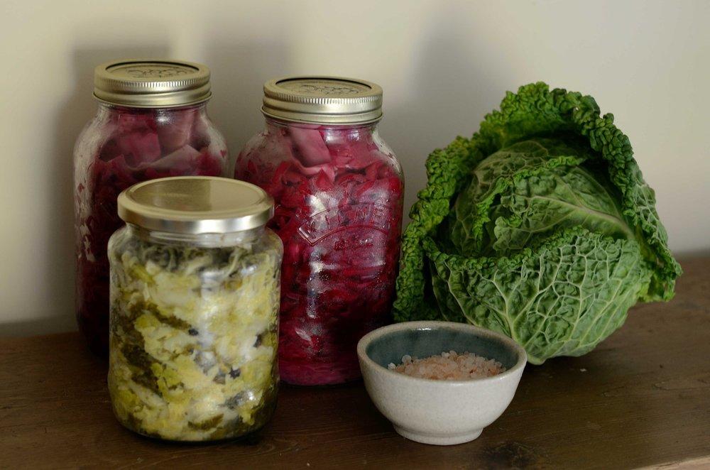 fermented probiotic food nutrition philadelphia