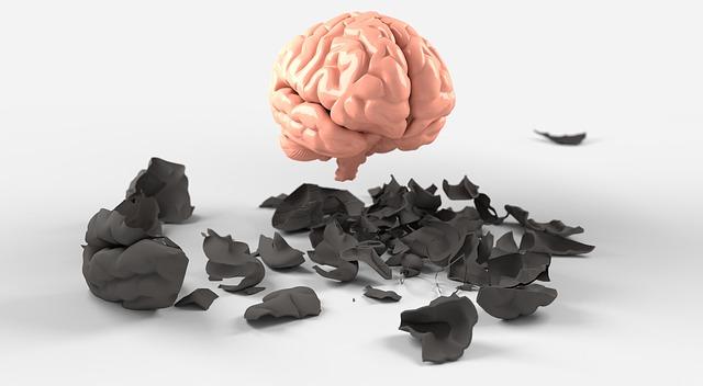 brain-3438742_640.jpg