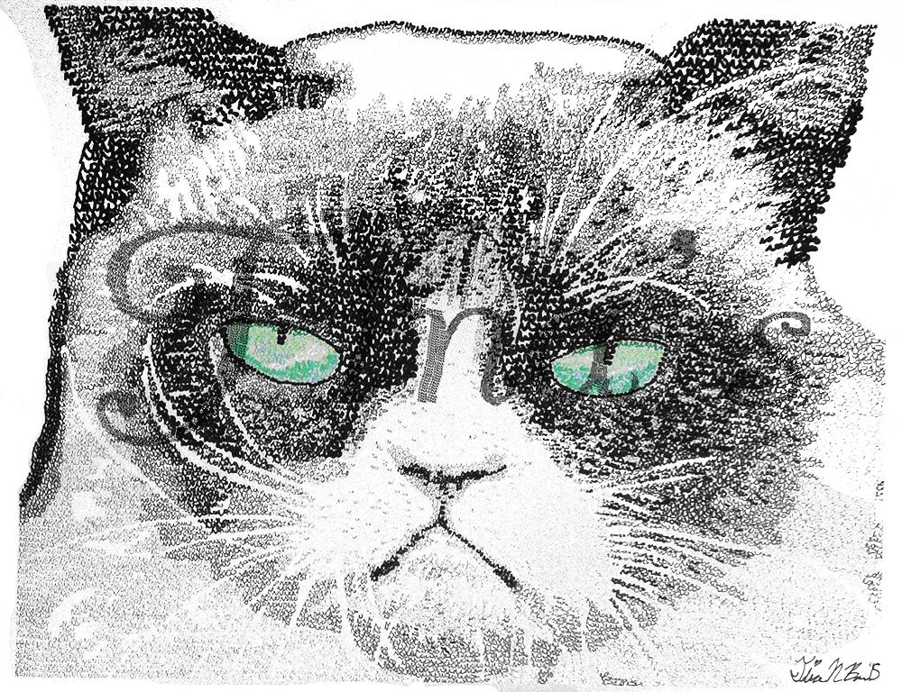 Grumpy+Cat+nw.jpg