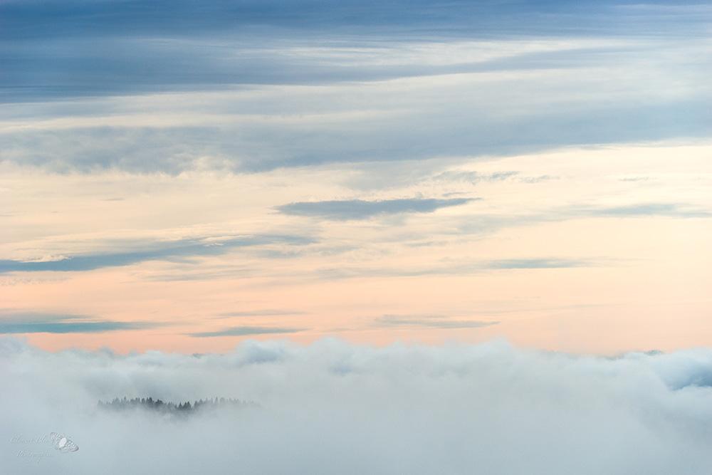 Mer de nuages depuis le sommet de la Dôle.