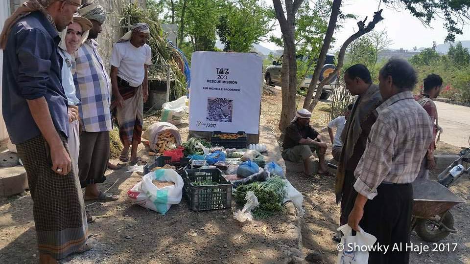 17974715_1835834080073245_1627337722_n-1 April 17 2017 Taiz Zoo  Rescue Mission Exclusive Appeal KMB.jpg