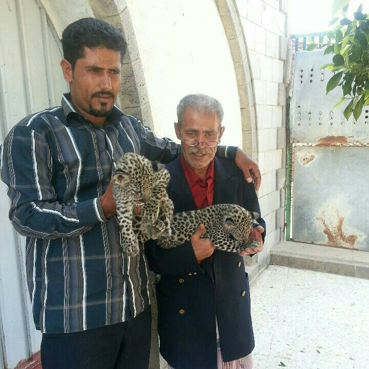 11 June 2017 Taiz Zoo Yemen.jpg