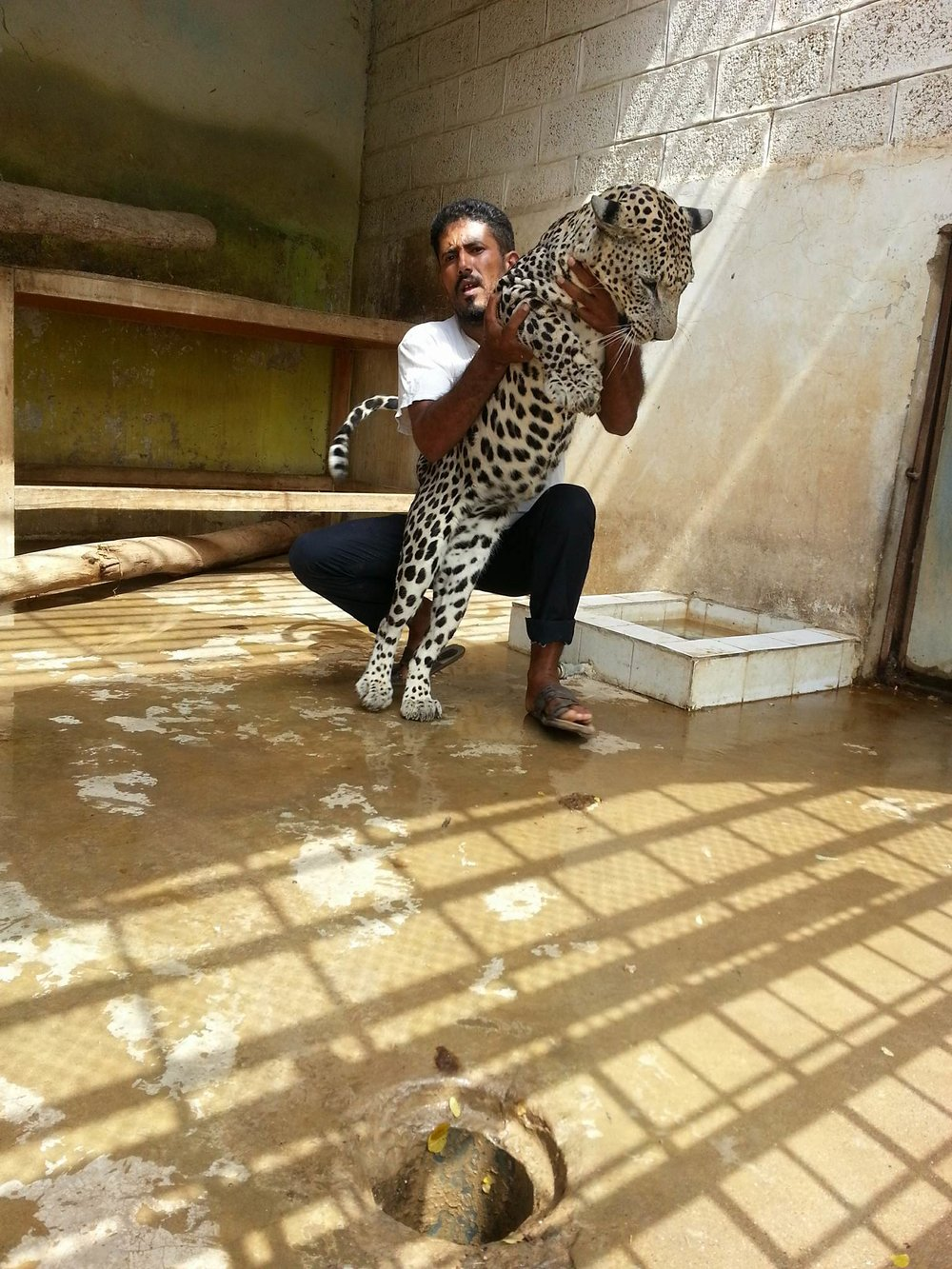 Taiz Zoo Sameer 19 July 2017.jpg