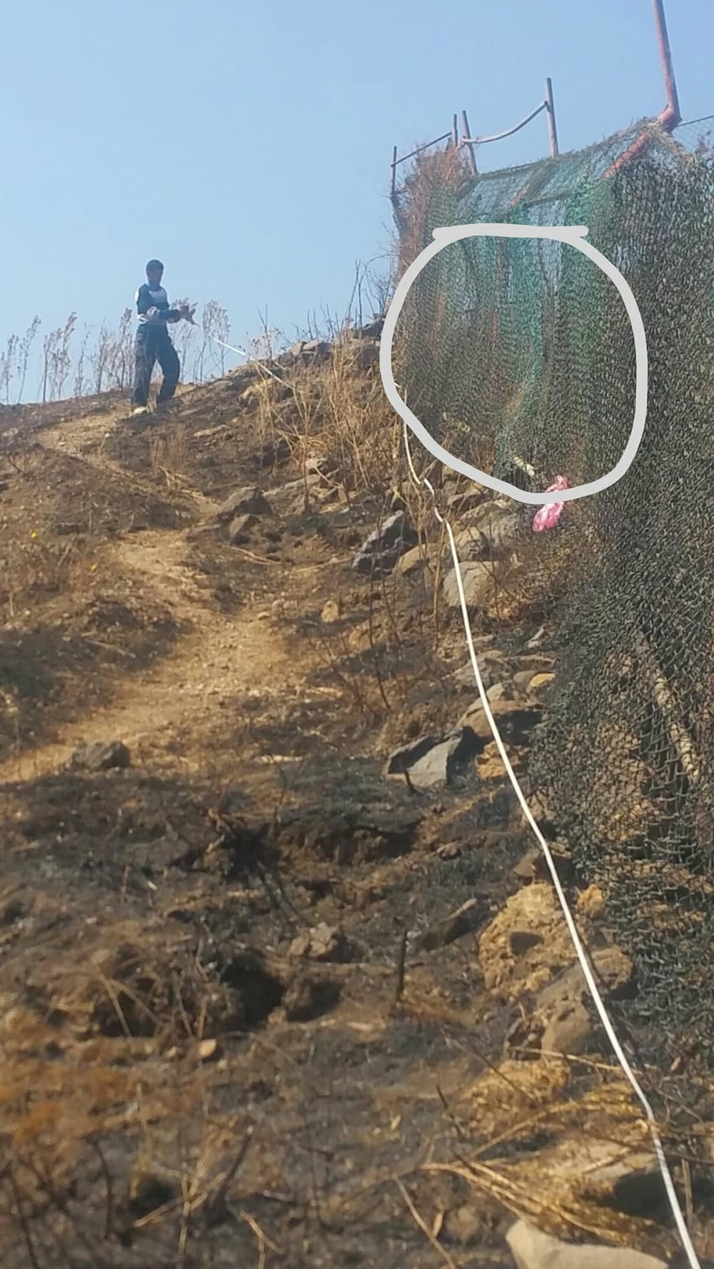 IBB ZOO 18 FEB 2018  open range fencing repair project by OWAP AR WITH HAITHAM AL BURHLAL MEASURING TODAY.jpg