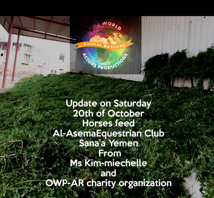 riding club 20 oct 2018 OWAP AR delivery of grass for horses nada coordinating Sana'a YEMEN rescue.png