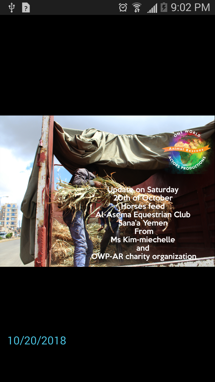 Riding Club Sana'a 20 OCT 2018 delivery arrives Horses feed by OWAP-AR Nada.png
