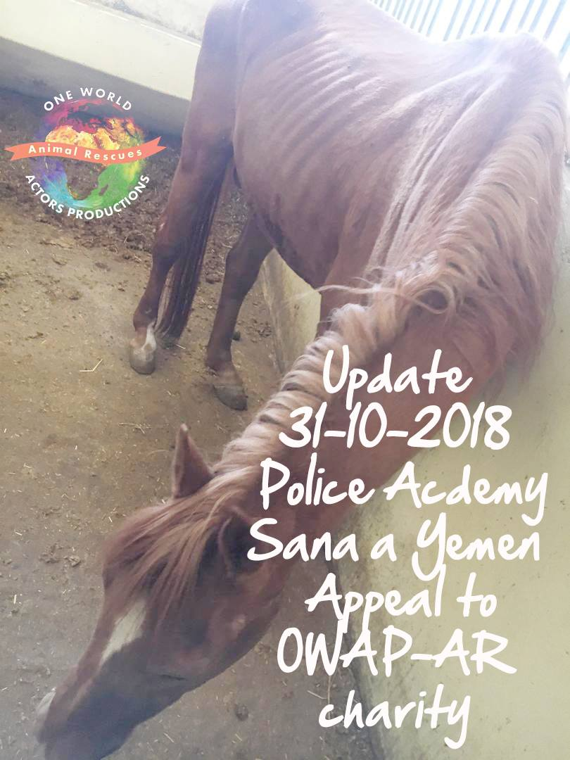 police academy sana'a yemen for OWAP AR N.P. pic Nada starving horse 31 OCT 2018 with text.jpg
